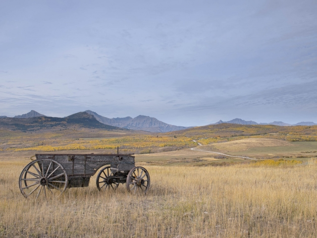 Old Cart near Waterton