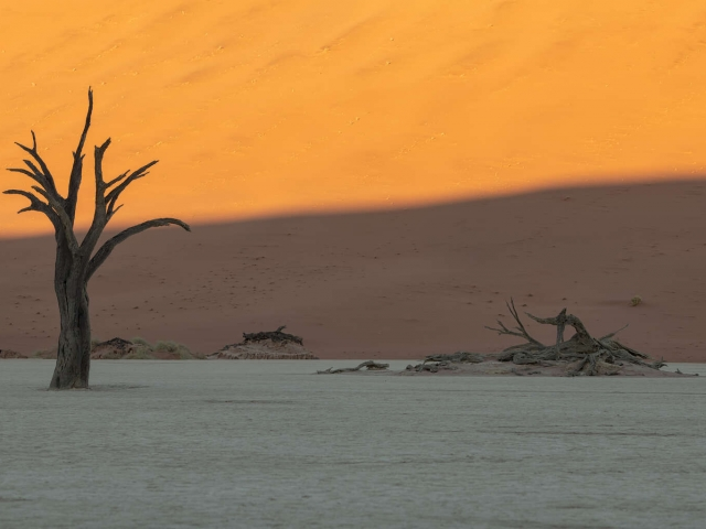 Deadvlei - Sunrise Landscape