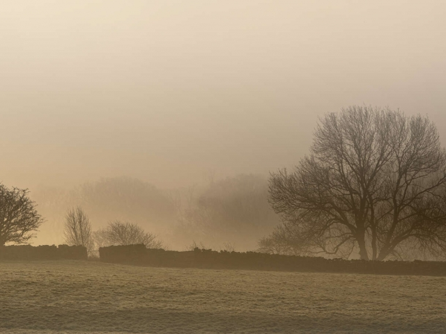 Goathland Mist