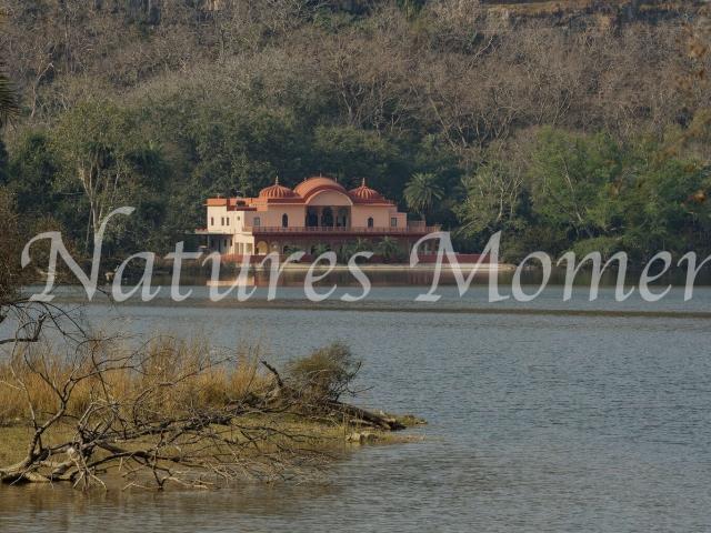 Jogi Mahal at Ranthambore