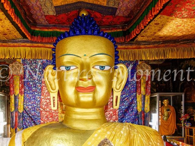 Shakyamuni Buddha at Shey Palace Monastery, Ladakh