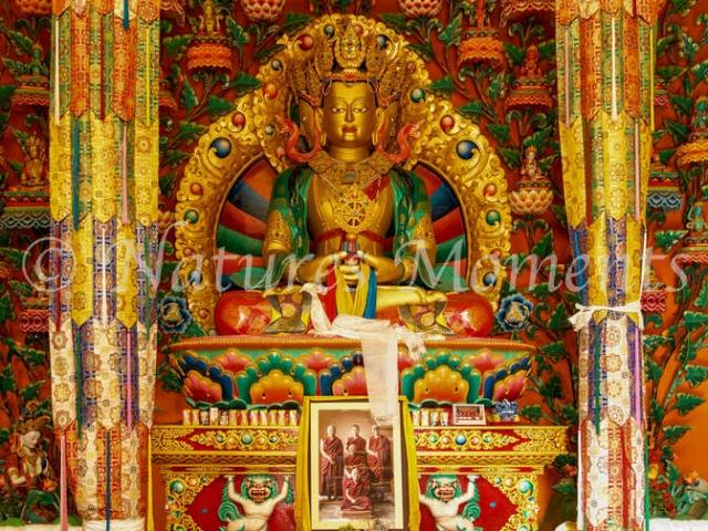 Budda at Matho Monastery