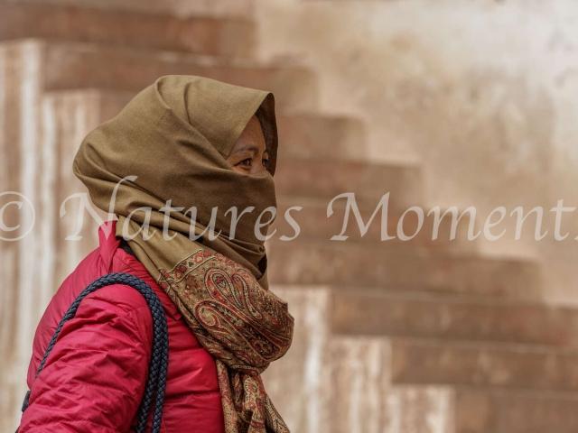 Young Lady, Matho Monastery