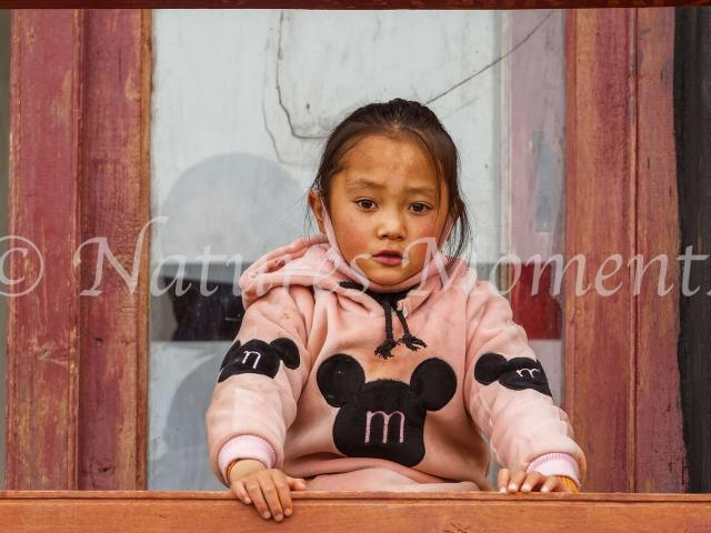 Young Spectator, Matho Monastery